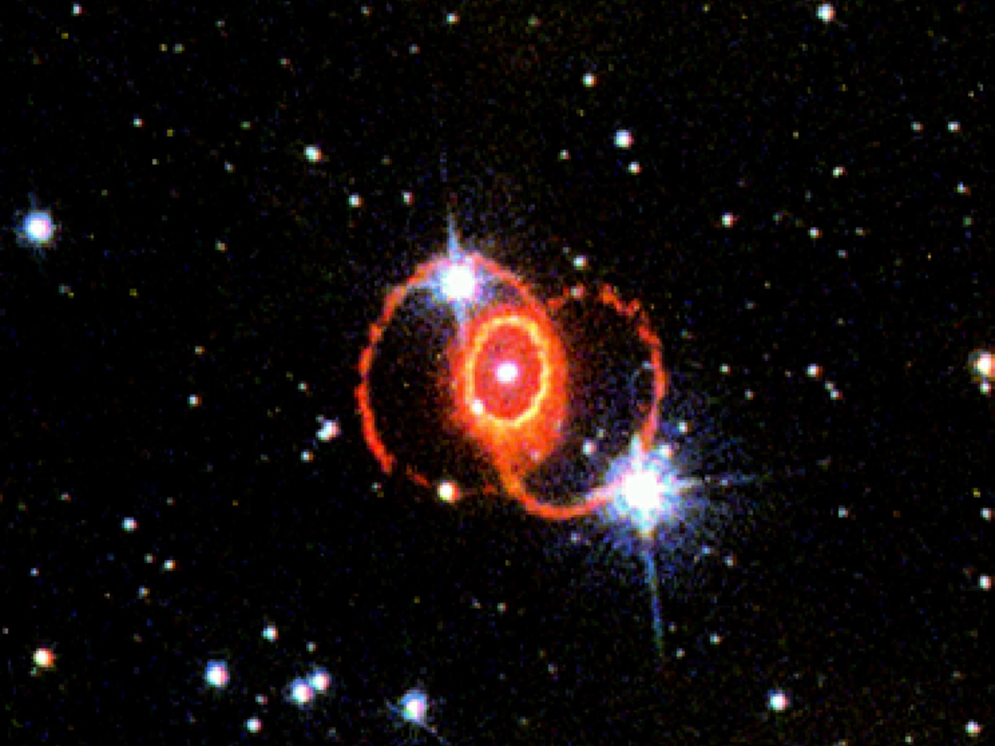 supernova 1987a discovery - HD1280×1280